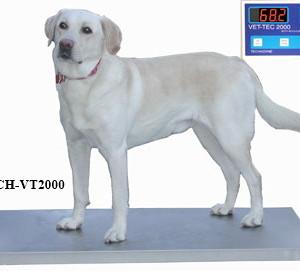 Vet Tech 2000 Platform scale